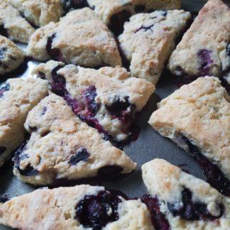 scone blueberry